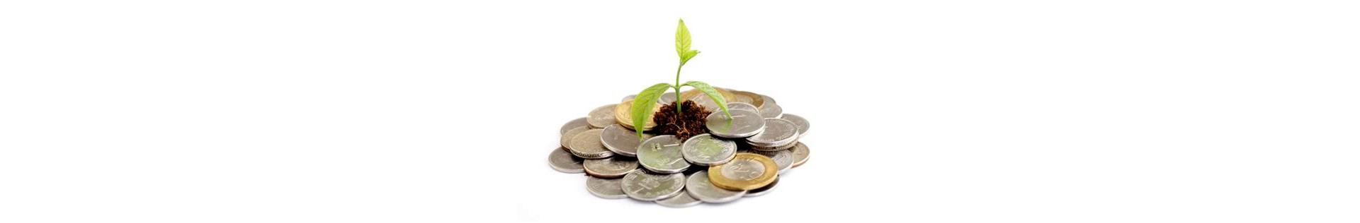 West Petrus En Paulus Praktische Info Financieel Header